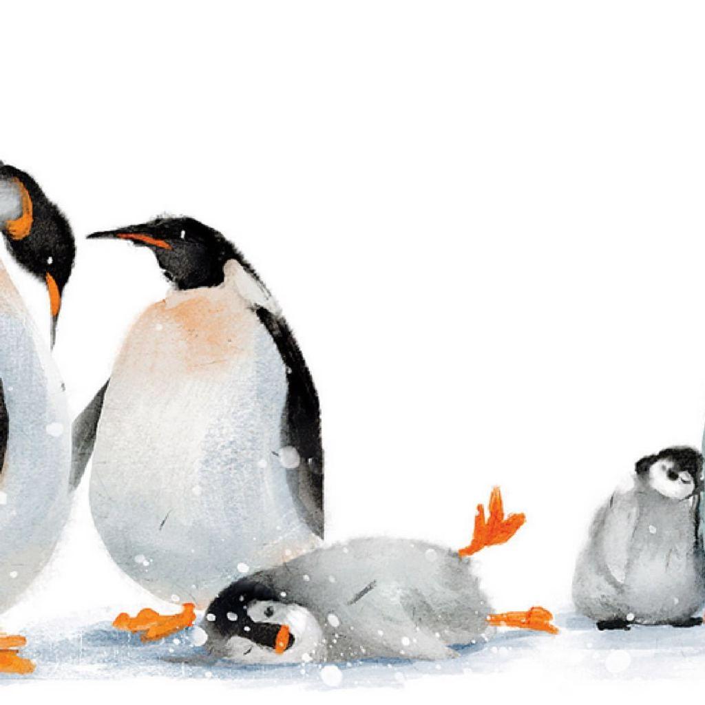 当北极熊遇到小章全集手工南极鱼企鹅大做法图片