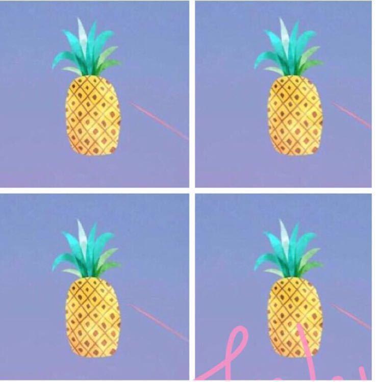 33根大菠萝拼装步骤图