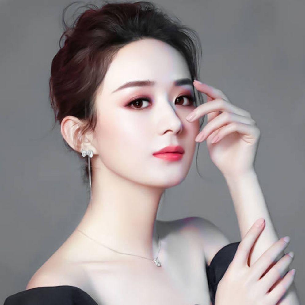 赵丽颖韩粉后援分会