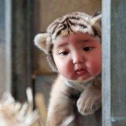 京城第一母老虎微博照片