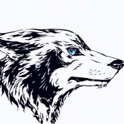 狼崽子爱吃鱼微博照片