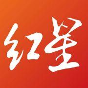 红星新闻微博照片