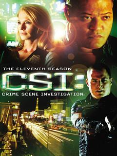 犯罪现场调查第十一季