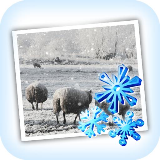 JixiPix Snow Daze 1.26 破解版 – 照片下雪效果处理软件