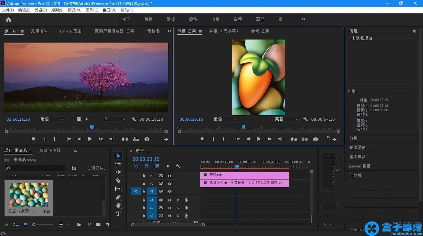 Adobe Premiere Pro CC 2019 v13.1.2.9 中文完整直装版