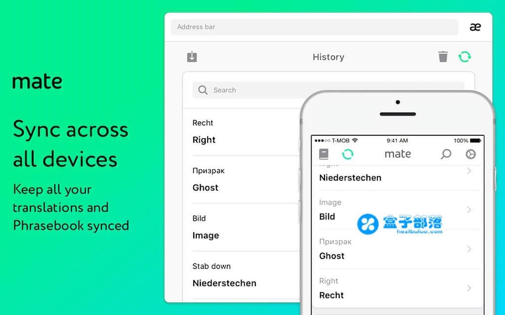 Mate Translate 5.1.3 一款优秀强大的多国语言即时翻译工具