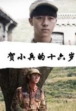賀小兵的十六歲