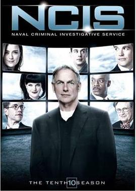海军罪案调查处第十六季