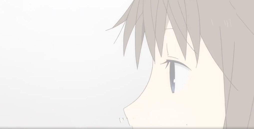 日本爱情动画《萤火之森》如果当一段爱情来临但是又注定它会消失,那你还会决定去爱吗? (22)