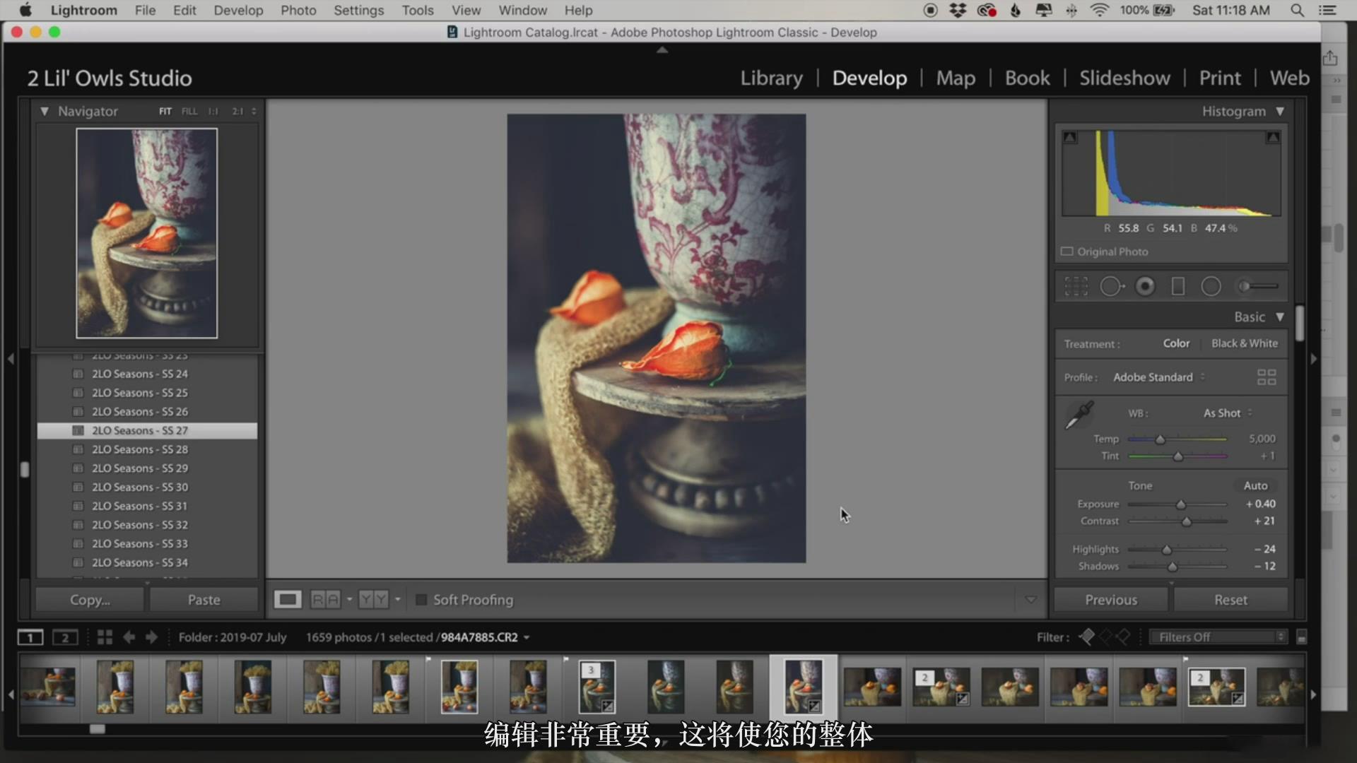 摄影教程_Lenslab –静物花卉产品摄影掌握色彩突破艺术界限研讨会-中文字幕 摄影教程 _预览图13