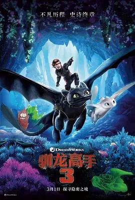 馴龍高手3:隱秘的世界 動畫片海報劇照