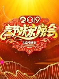 2019年北京卫视春节联欢晚会