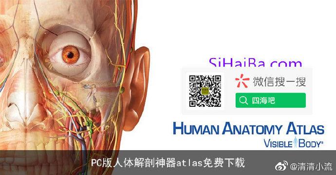 PC版人体解剖神器atlas免费下载 技术控 第1张