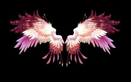 自制可体验飞行感觉的翅膀